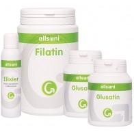 Nährstoffpaket mit Ackerschachtelhalm (1 x Elixier, 2 x Glusatin, 1 x Filatin)